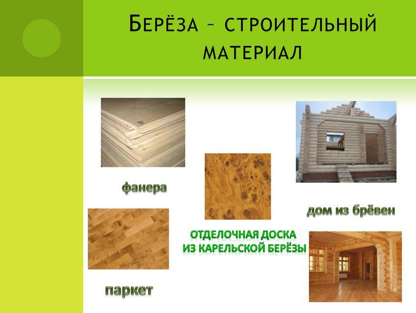 Берёза – строительный материал фанера паркет