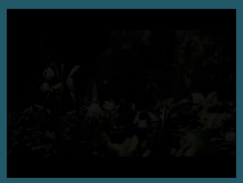 """Разработка урока русского языка с презентацией """"Способы передачи чужой речи"""""""