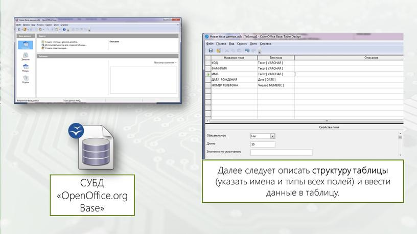 СУБД «OpenOffice.org Base» Далее следует описать структуру таблицы (указать имена и типы всех полей) и ввести данные в таблицу