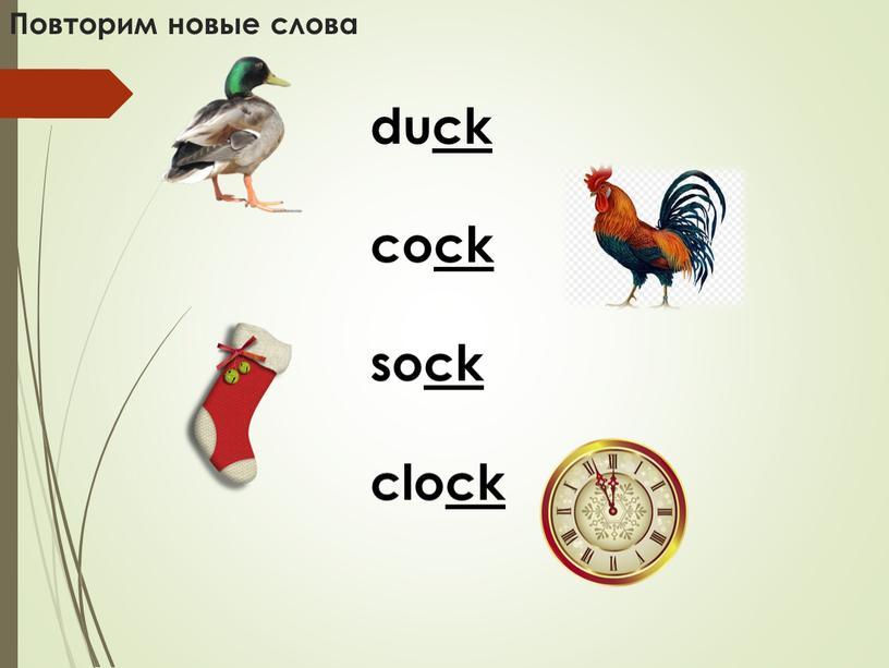 Повторим новые слова duck cock sock clock