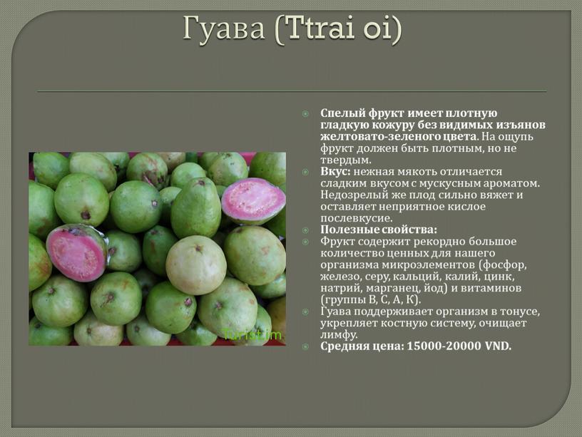 Гуава (Ttrai oi) Спелый фрукт имеет плотную гладкую кожуру без видимых изъянов желтовато-зеленого цвета