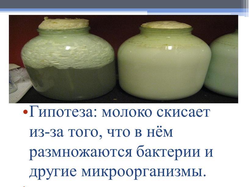 Гипотеза: молоко скисает из-за того, что в нём размножаются бактерии и другие микроорганизмы