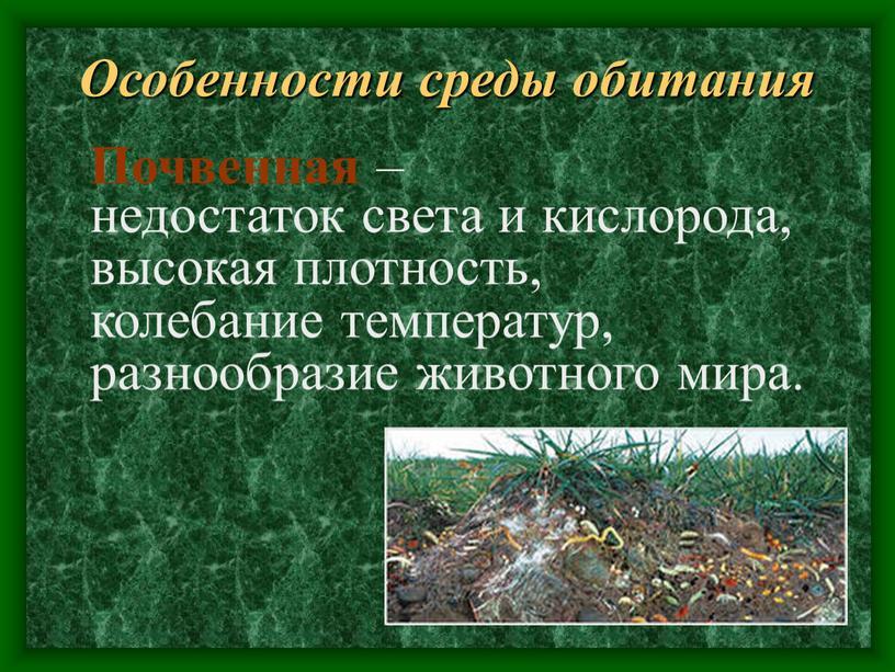Особенности среды обитания недостаток света и кислорода, высокая плотность, колебание температур, разнообразие животного мира