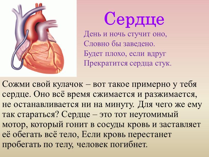 Сердце День и ночь стучит оно,