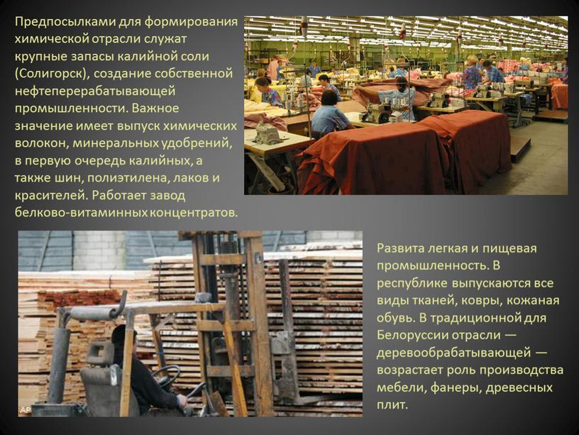 Предпосылками для формирования химической отрасли служат крупные запасы калийной соли (Солигорск), создание собственной нефтеперерабатывающей промышленности