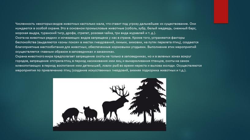 Численность некоторых видов животных настолько мала, что ставит под угрозу дальнейшее их существование