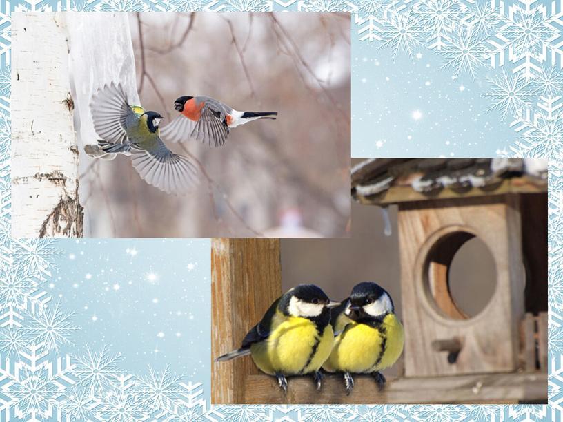 """Конспект урока окружающего мира """"Как помочь птицам зимой?"""" в 1 классе (c презентацией, самоанализом и технологической картой урока)"""