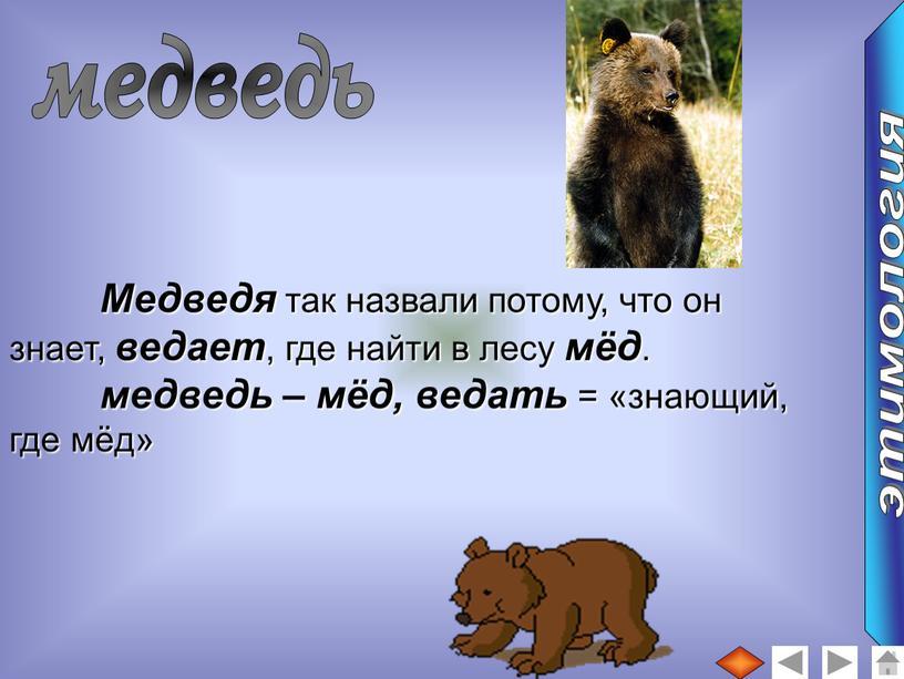 Медведя так назвали потому, что он знает, ведает , где найти в лесу мёд