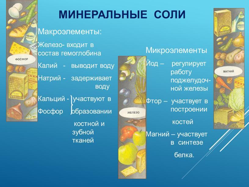 МИНЕРАЛЬНЫЕ СОЛИ Макроэлементы:
