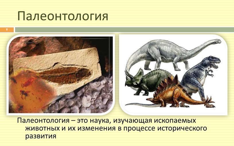 Палеонтология Палеонтология – это наука, изучающая ископаемых животных и их изменения в процессе исторического развития 8