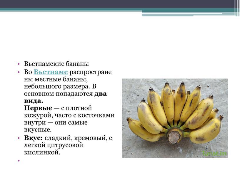 Вьетнамские бананы Во Вьетнаме распространены местные бананы, небольшого размера