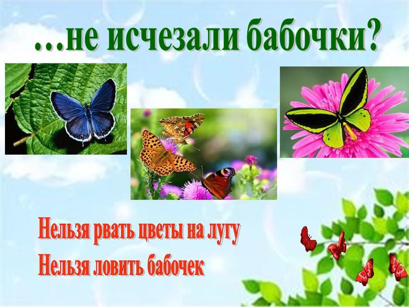 Нельзя рвать цветы на лугу Нельзя ловить бабочек
