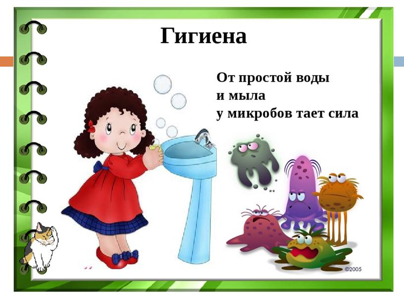 """Презентация на тему """"Бактерии"""" к уроку биологии,  5 класс"""
