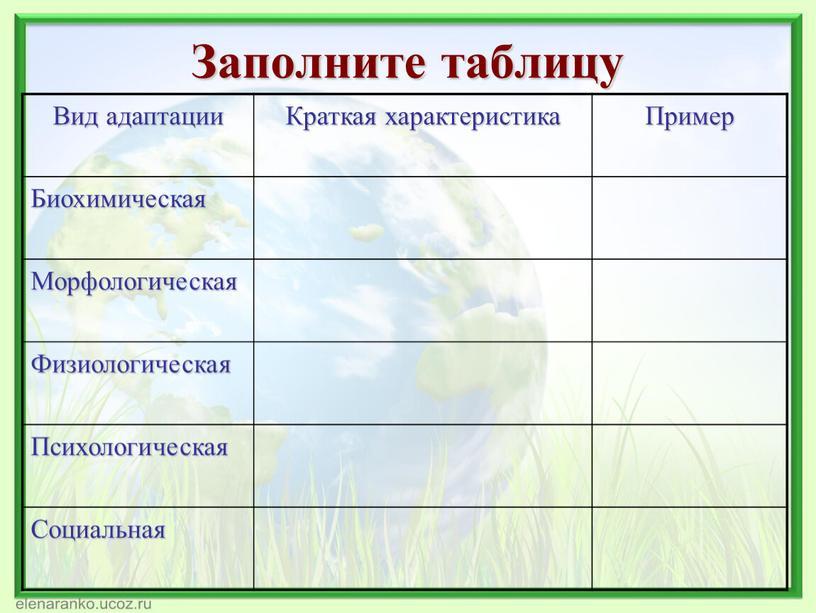 Заполните таблицу Вид адаптации