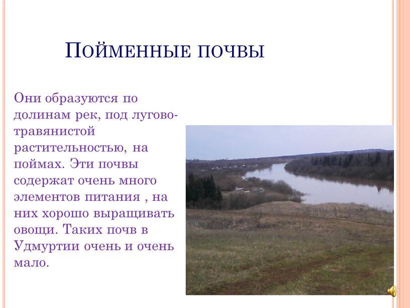 Пойменные почвы Они образуются по долинам рек, под лугово- травянистой растительностью, на поймах