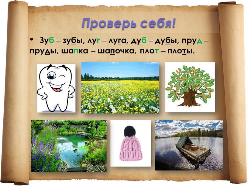 Проверь себя! Зуб – зубы, луг – луга, дуб – дубы, пруд – пруды, шапка – шапочка, плот – плоты