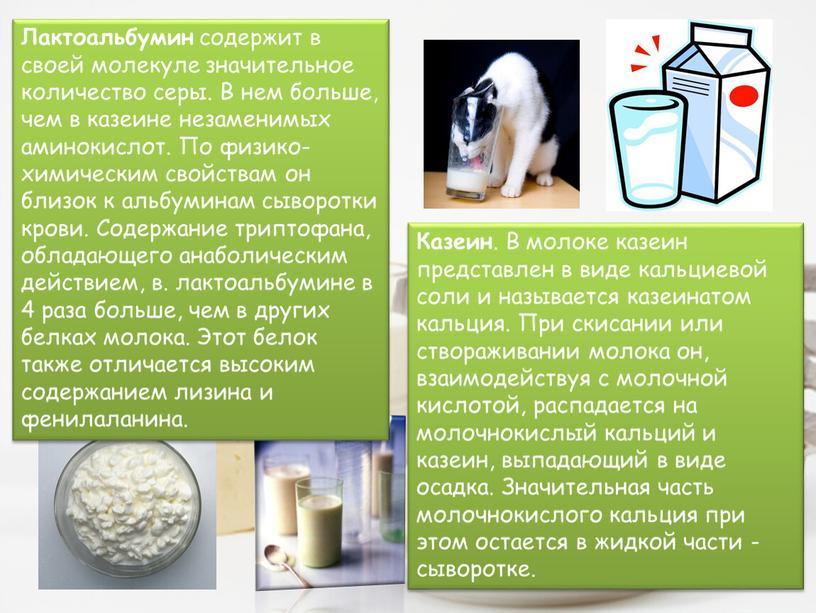 Казеин . В молоке казеин представлен в виде кальциевой соли и называется казеинатом кальция