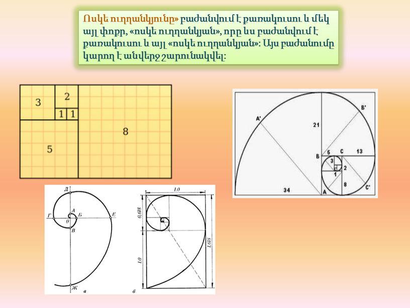 Ոսկե ուղղանկյունը» բաժանվում է քառակուսու և մեկ այլ փոքր, «ոսկե ուղղանկյան», որը ևս բաժանվում է քառակուսու և այլ «ոսկե ուղղանկյան»: Այս բաժանումը կարող է անվերջ…