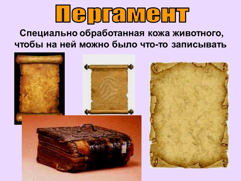 Пергамент Специально обработанная кожа животного, чтобы на ней можно было что-то записывать