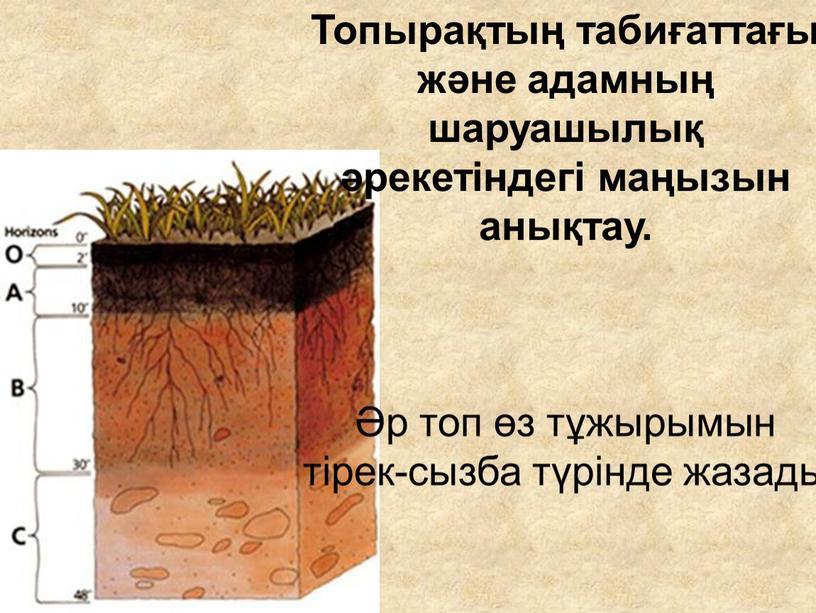 Топырақтың табиғаттағы және адамның шаруашылық әрекетіндегі маңызын анықтау