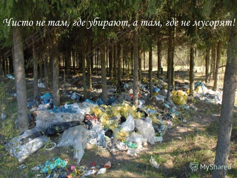 Чисто не там, где убирают, а там, где не мусорят!