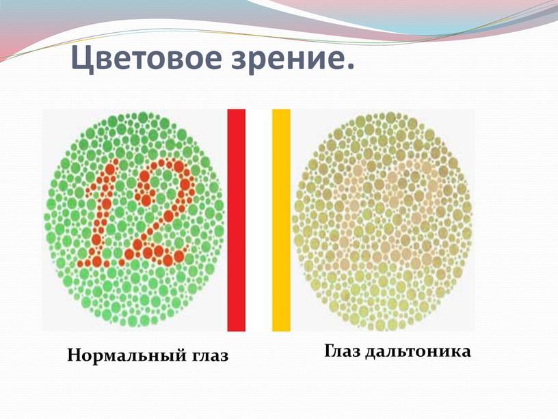 Цветовое зрение. Нормальный глаз