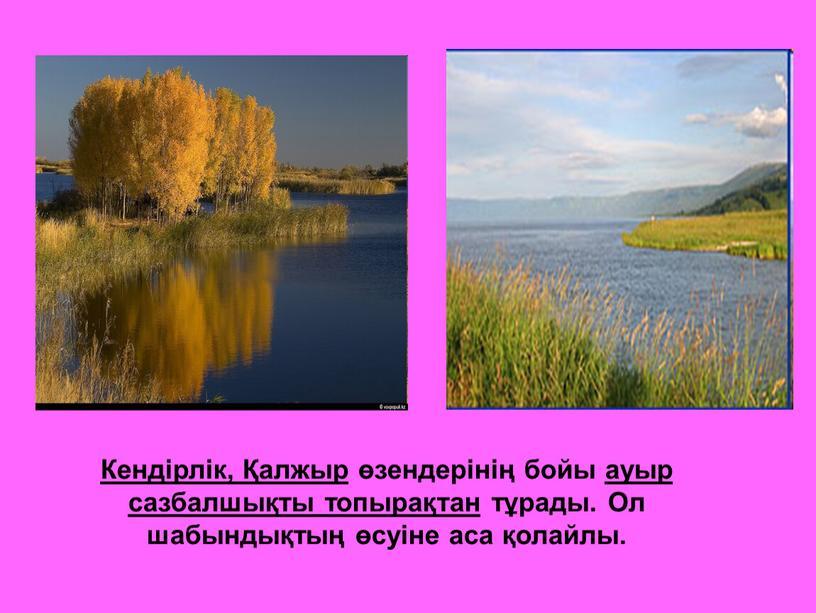 Кендірлік, Қалжыр өзендерінің бойы ауыр сазбалшықты топырақтан тұрады