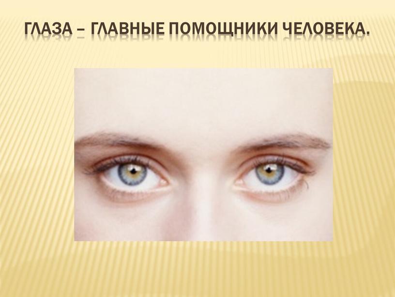Глаза – главные помощники человека
