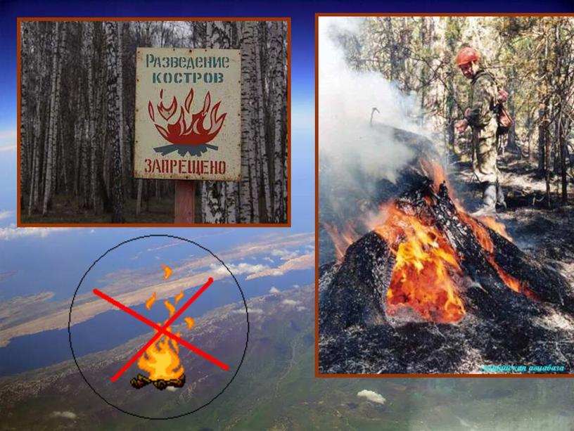 Урок окружающего мира в 3 классе «Природа в опасности! Охрана природы»
