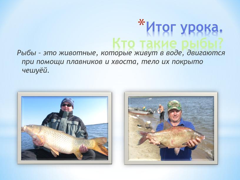 Итог урока. Кто такие рыбы? Рыбы – это животные, которые живут в воде, двигаются при помощи плавников и хвоста, тело их покрыто чешуёй