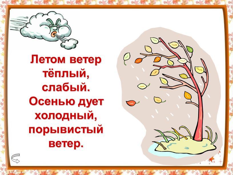 Летом ветер тёплый, слабый. Осенью дует холодный, порывистый ветер