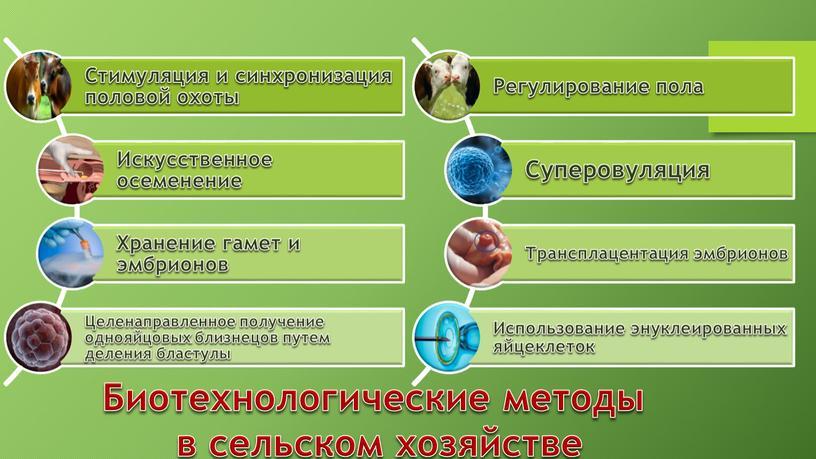 Биотехнологические методы в сельском хозяйстве