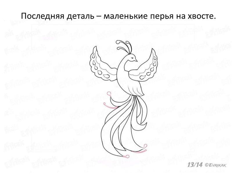 Последняя деталь – маленькие перья на хвосте
