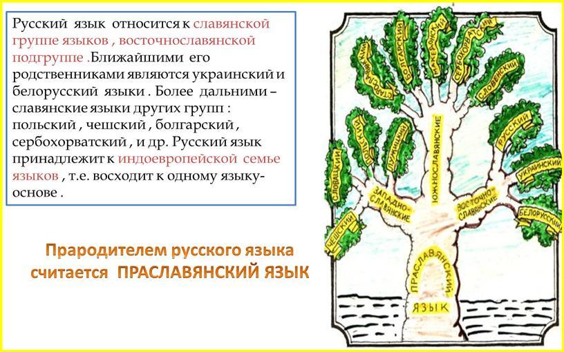 Русский язык относится к славянской группе языков , восточнославянской подгруппе