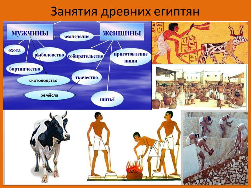 Занятия древних египтян скотоводство ремёсла