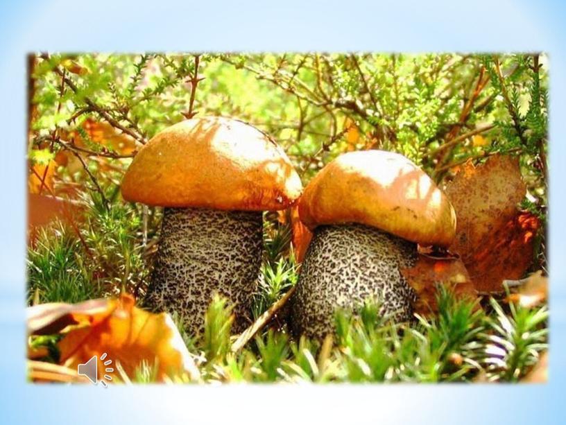 "Занятие ""У медведя во бору грибы, ягоды беру"""