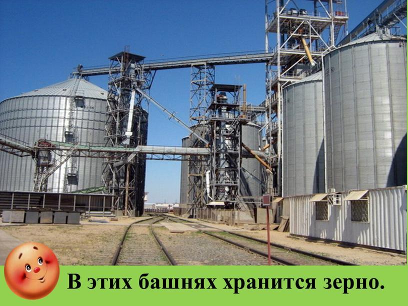 В этих башнях хранится зерно.