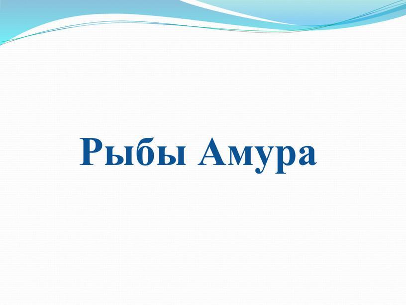 Рыбы Амура