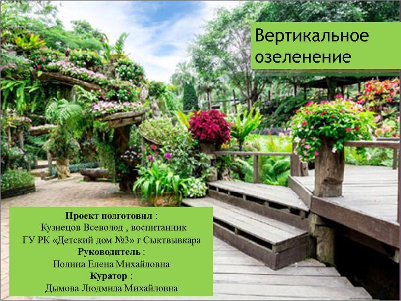 Вертикальное озеленение Проект подготовил :