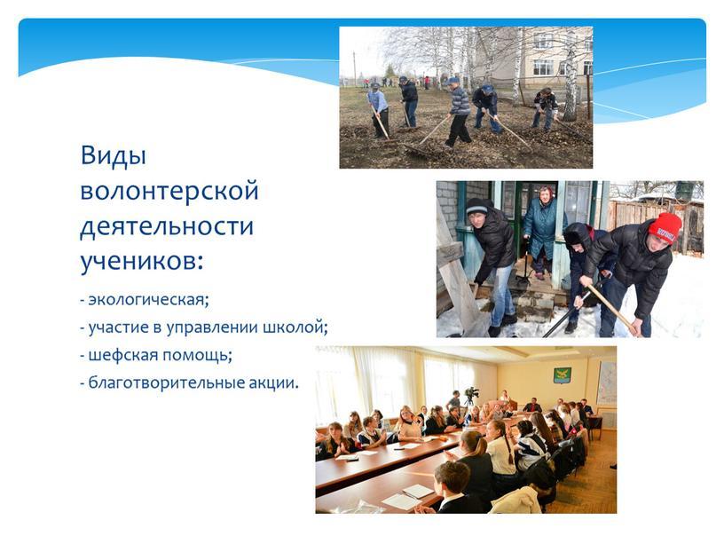 Виды волонтерской деятельности учеников: