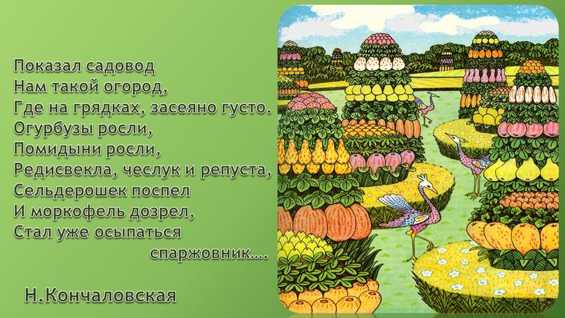 Показал садовод Нам такой огород,