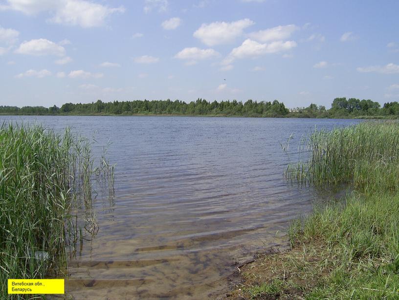 Витебская обл., Беларусь