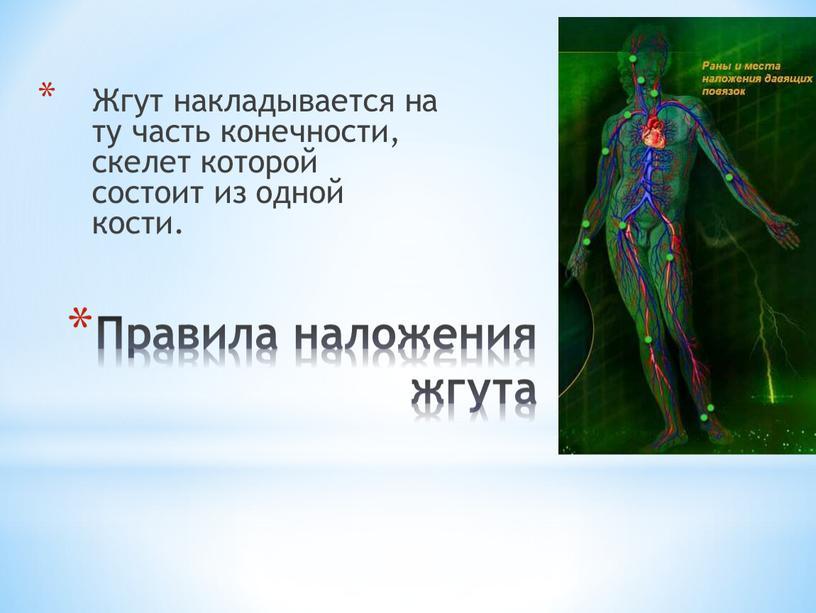 Правила наложения жгута Жгут накладывается на ту часть конечности, скелет которой состоит из одной кости