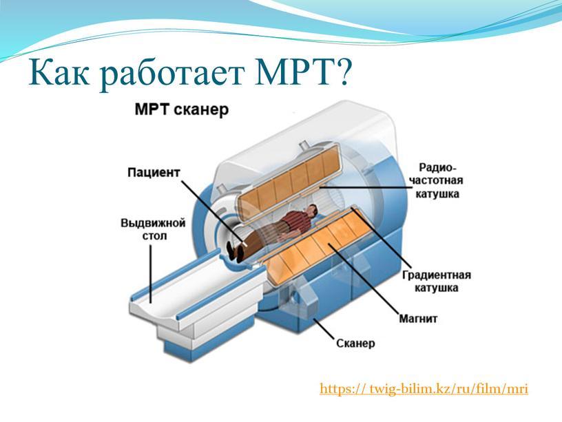 Как работает МРТ? https:// twig-bilim