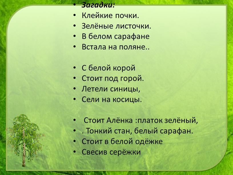 Загадки: Клейкие почки. Зелёные листочки