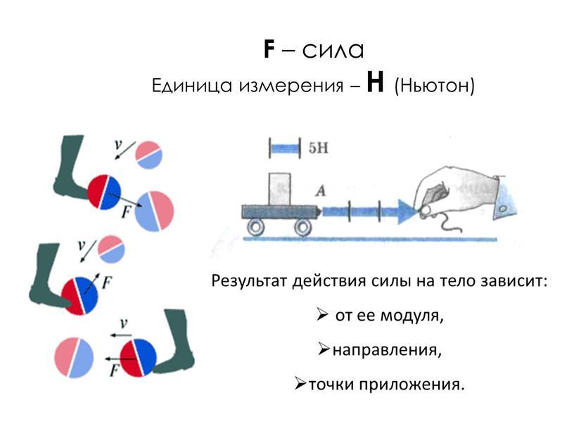 F – сила Единица измерения –