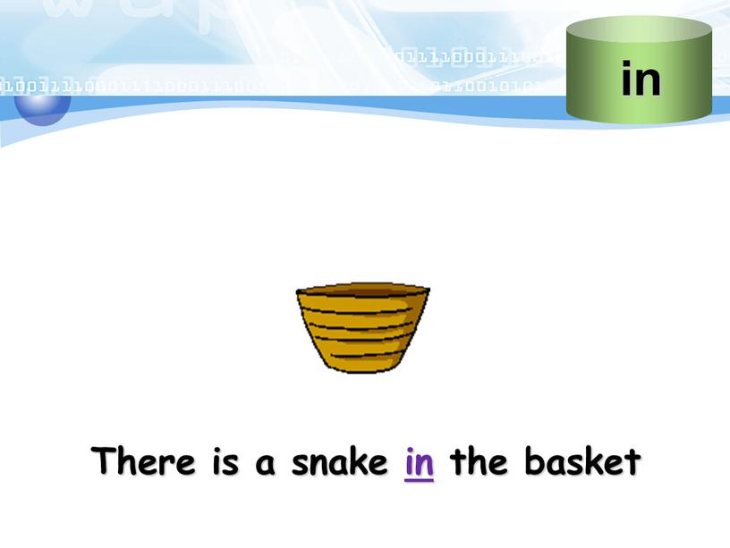 There is a snake in the basket