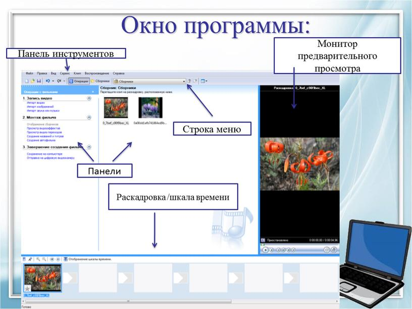 Окно программы: Панели Раскадровка /шкала времени