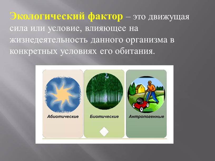 Экологический фактор – это движущая сила или условие, влияющее на жизнедеятельность данного организма в конкретных условиях его обитания