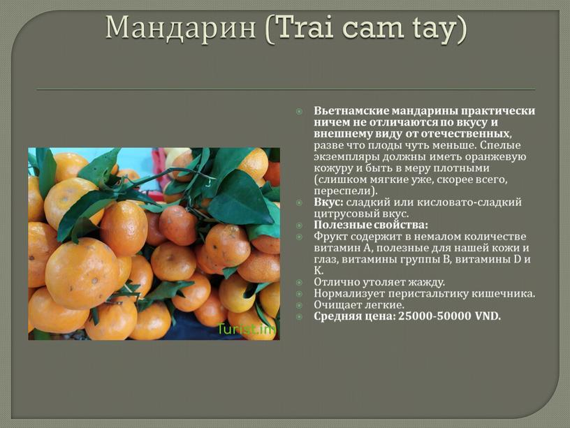 Мандарин (Trai cam tay) Вьетнамские мандарины практически ничем не отличаются по вкусу и внешнему виду от отечественных , разве что плоды чуть меньше